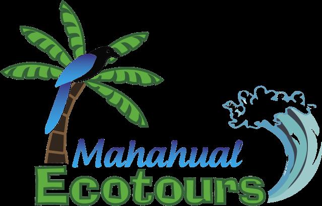 MET_logo-color