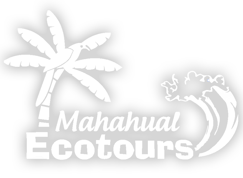 Mahahual Ecotours